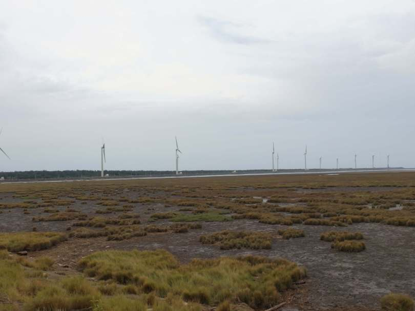 Gaomei Wetland